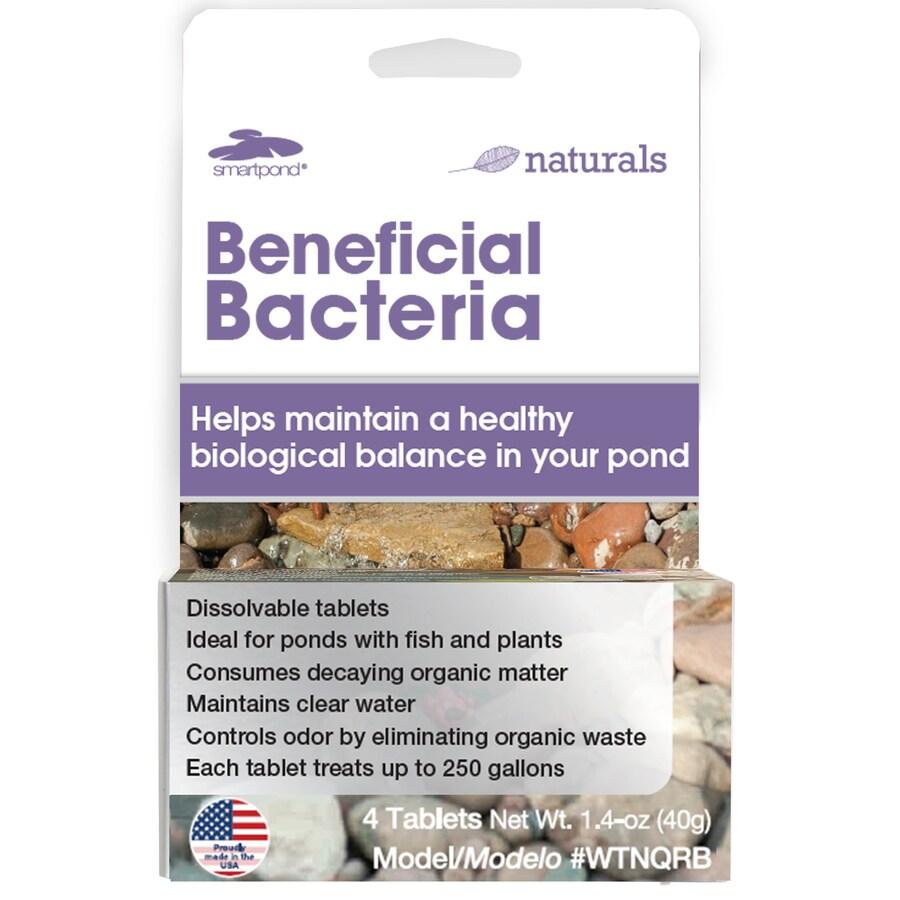 smartpond 4-Pack Bacteria Pond Cleaner
