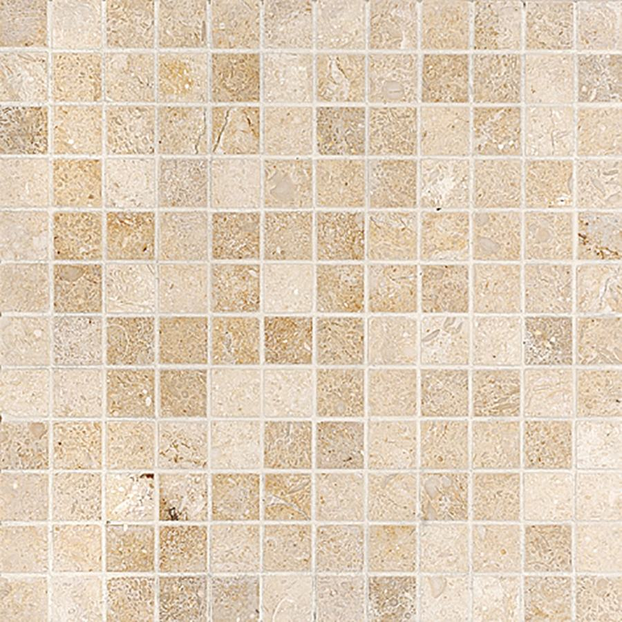 Marble Systems 6-Pack NBS Seashell Natural Stone Mosaic Square Wall Tile (Common: 12-in x 12-in; Actual: 12-in x 12-in)