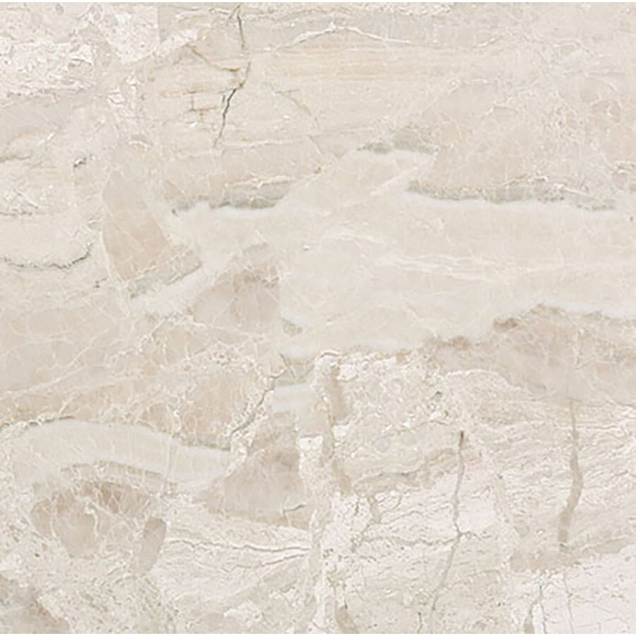 Bermar Natural Stone Royal Beige Honed Marble Floor and Wall Tile (Common: 24-in x 24-in; Actual: 24-in x 24-in)