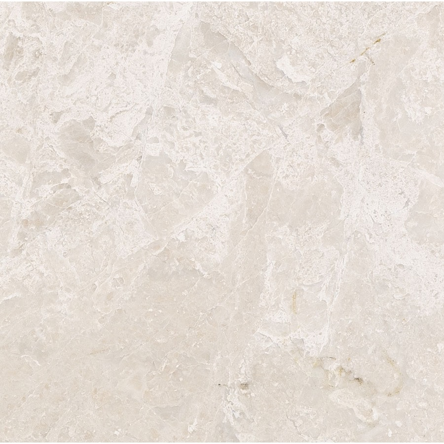 Bermar Natural Stone Royal Beige Polished Marble Floor and Wall Tile (Common: 24-in x 24-in; Actual: 24-in x 24-in)
