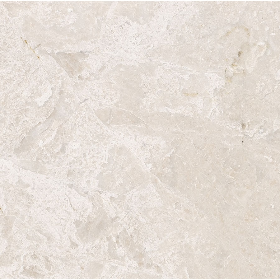 Bermar Natural Stone Royal Beige Polished Marble Floor and Wall Tile (Common: 12-in x 12-in; Actual: 12-in x 12-in)