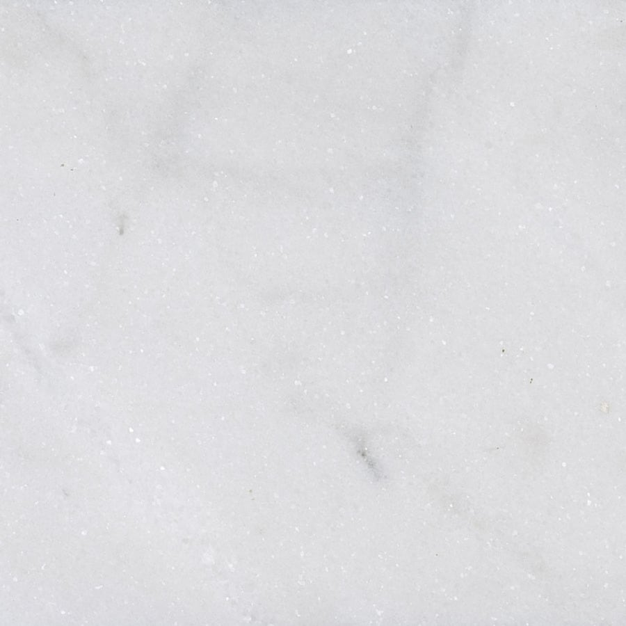 Bermar Natural Stone Arctic White Polished Marble Floor and Wall Tile (Common: 18-in x 18-in; Actual: 18-in x 18-in)