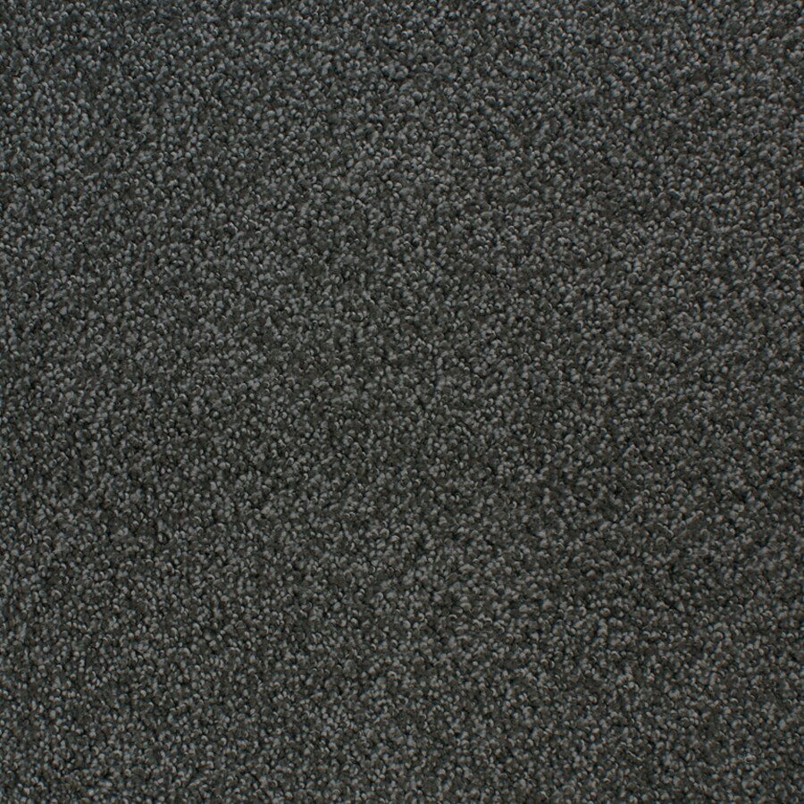 STAINMASTER Active Family Oak Grove Zinc Cut and Loop Indoor Carpet