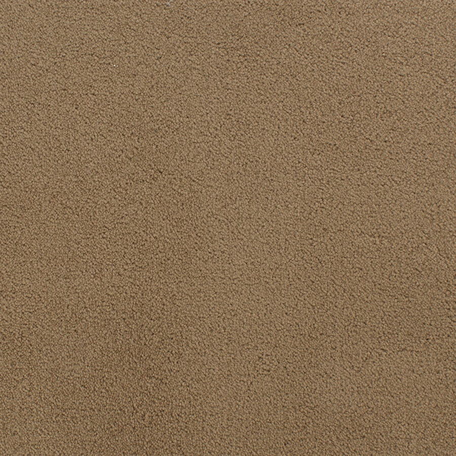 STAINMASTER Active Family Capri Place Brown/Tan Plush Indoor Carpet