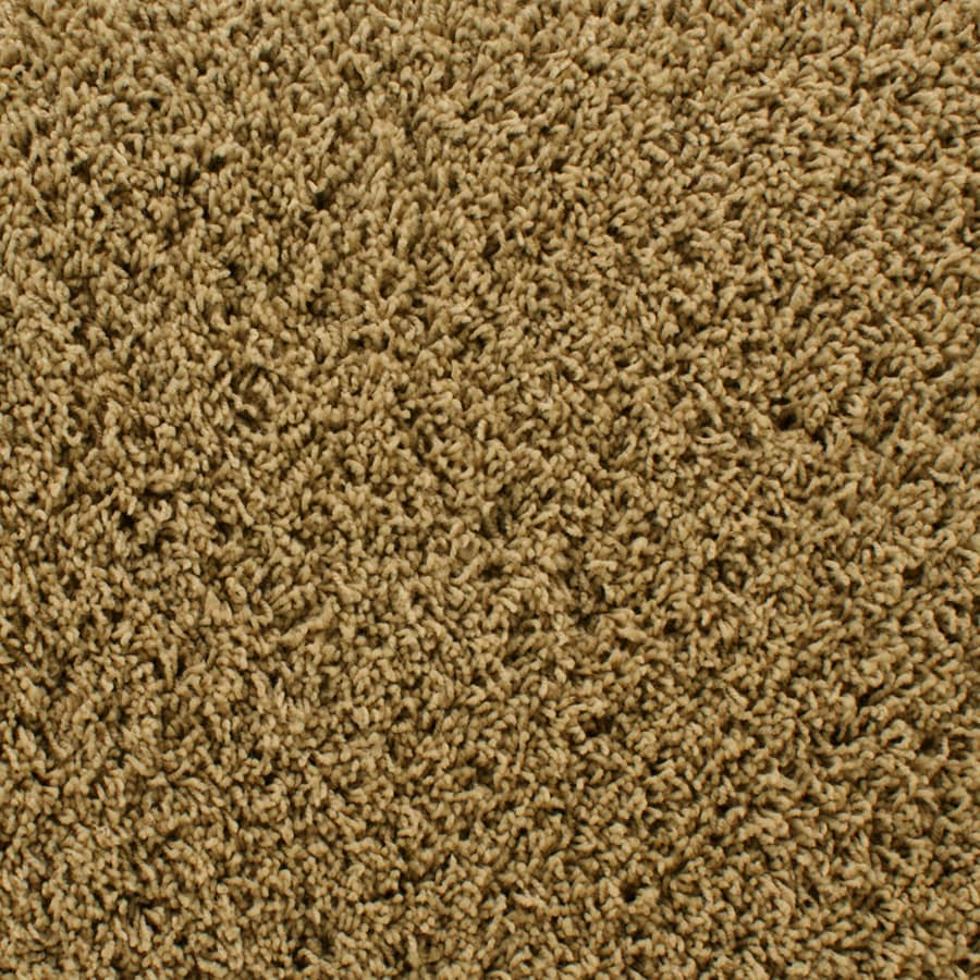 STAINMASTER Active Family Dorchester Brown Frieze Indoor Carpet
