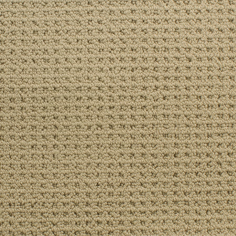 STAINMASTER Active Family San Domenico Brown Fashion Forward Indoor Carpet