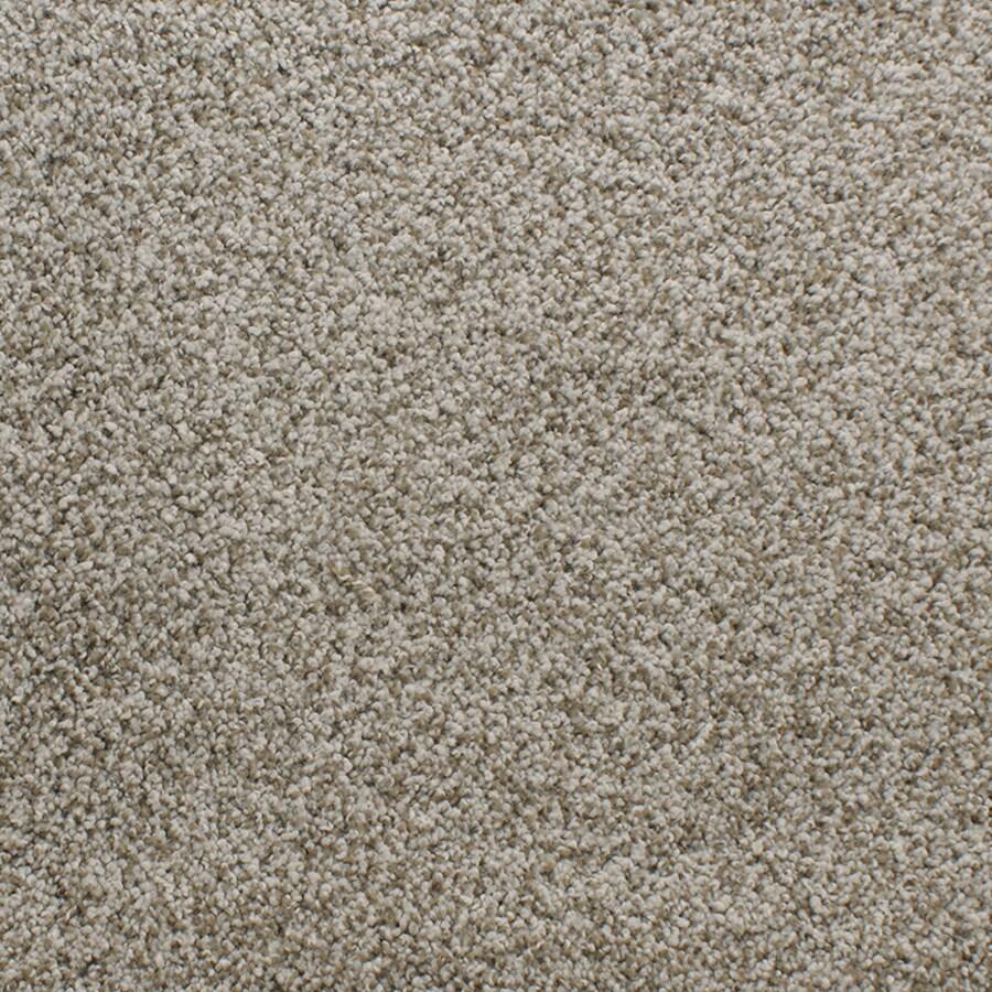 Dixie Group Active Family Exuberance II 103 Cream Textured Indoor Carpet