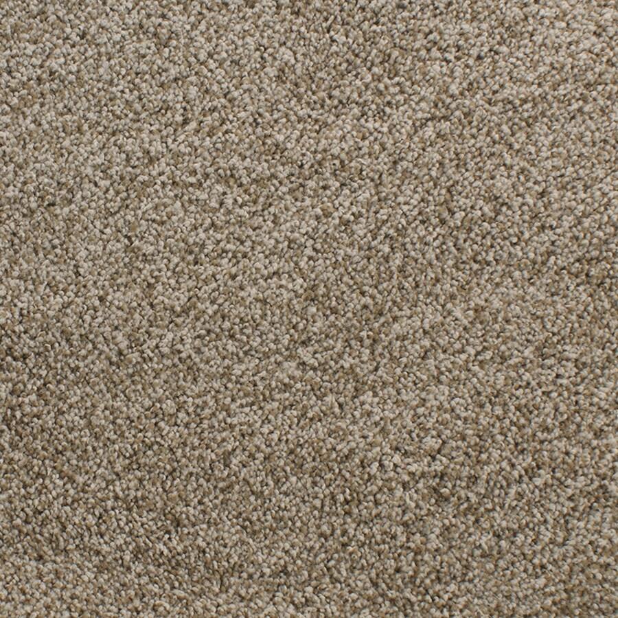 Dixie Group Active Family Exuberance II 108 Brown Textured Indoor Carpet