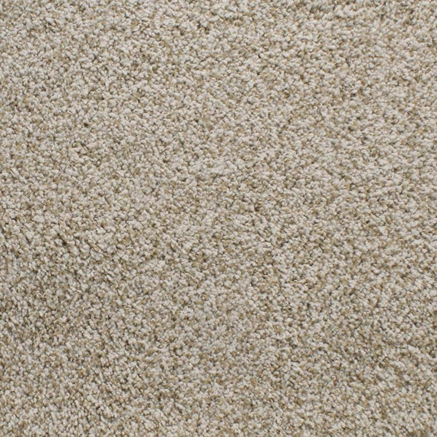 Dixie Group Active Family Exuberance III Cream/Beige/Almond Textured Indoor Carpet