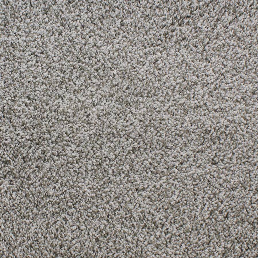 Dixie Group Active Family Exuberance III Gray/Silver Textured Indoor Carpet