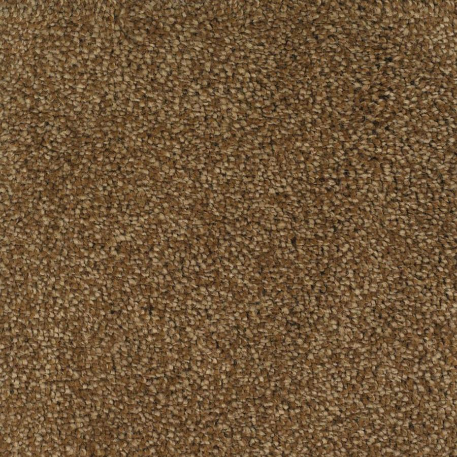 STAINMASTER TruSoft Briar Patch Brown/Tan Textured Indoor Carpet