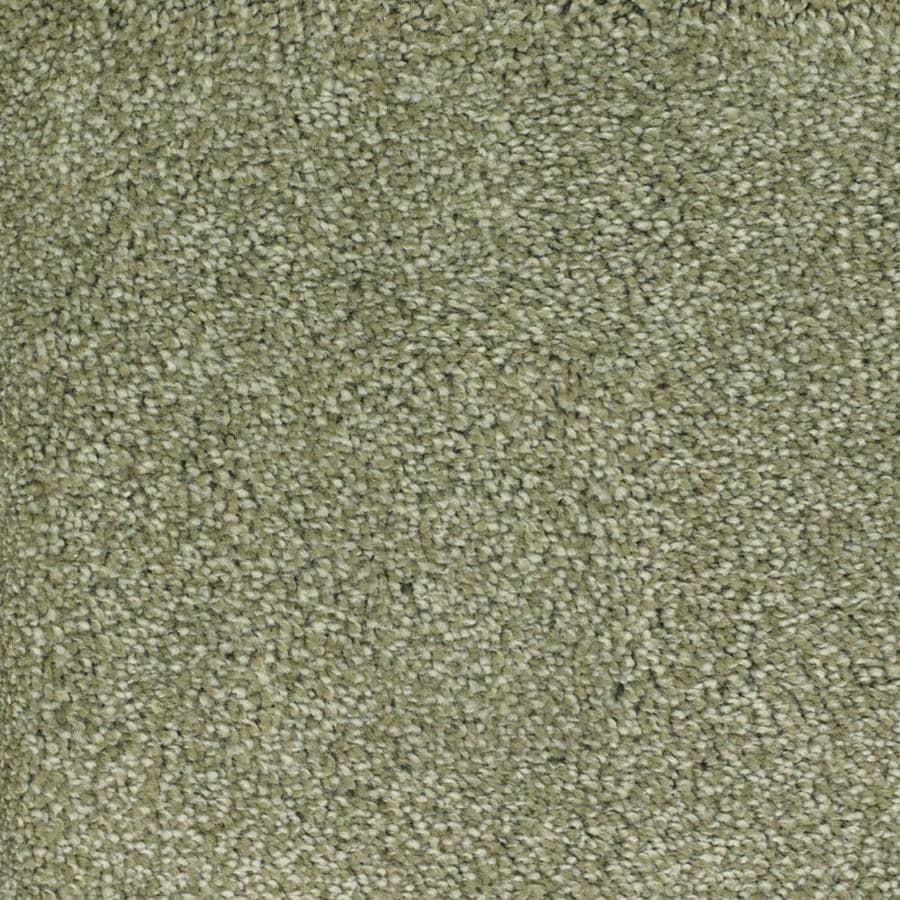 STAINMASTER TruSoft Shafer Valley Green Textured Indoor Carpet