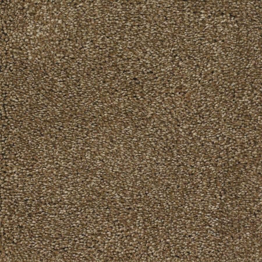 STAINMASTER TruSoft Shafer Valley Brown/Tan Textured Indoor Carpet