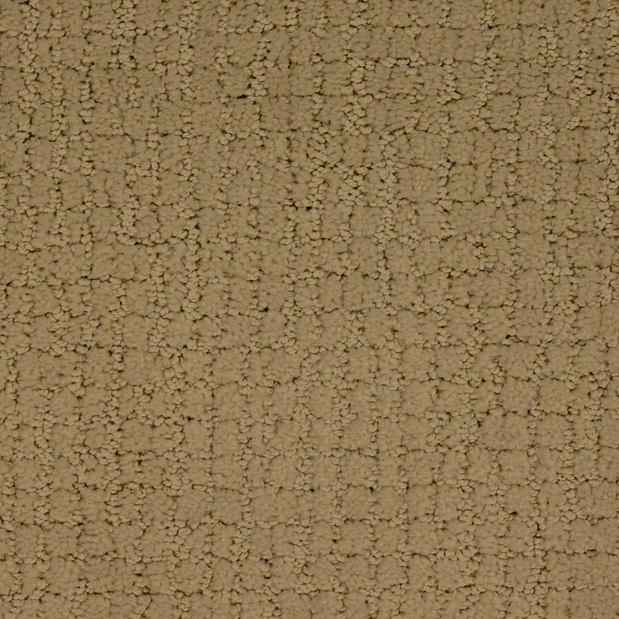 STAINMASTER TruSoft Perpetual Yellow/Gold Cut and Loop Indoor Carpet