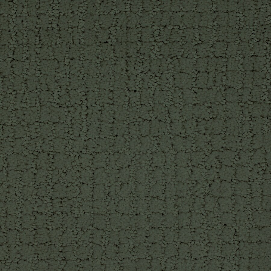 STAINMASTER TruSoft Perpetual Green Cut and Loop Indoor Carpet