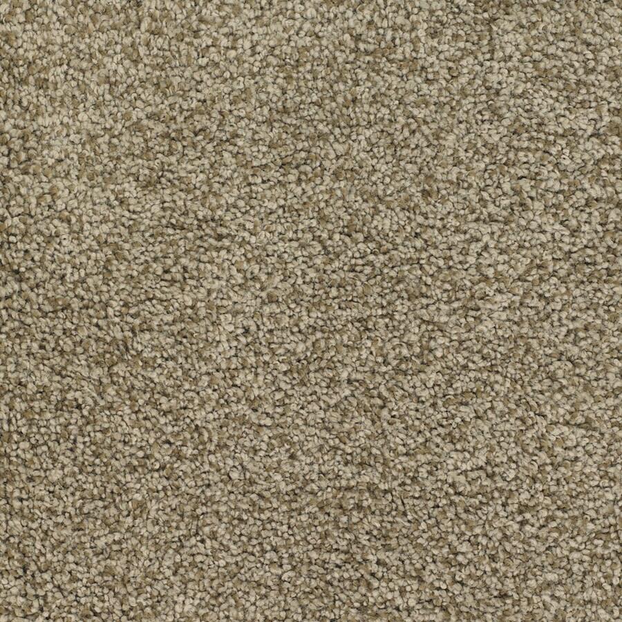 STAINMASTER TruSoft Chimney Rock Brown/Tan Textured Indoor Carpet