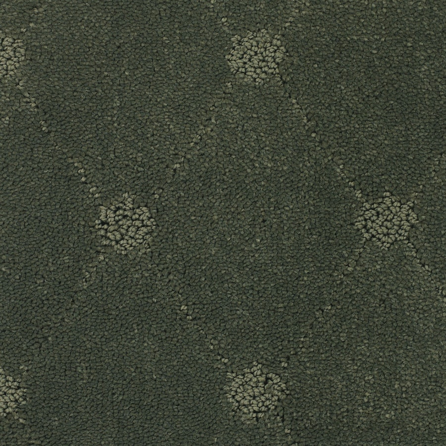 STAINMASTER TruSoft Columbia Valley Green Cut and Loop Indoor Carpet