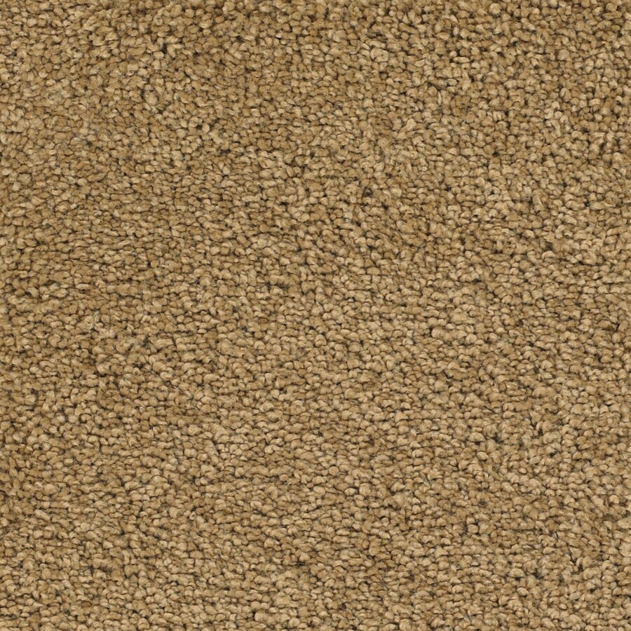 Dixie Group TruSoft Pomadour Yellow/Gold Textured Indoor Carpet