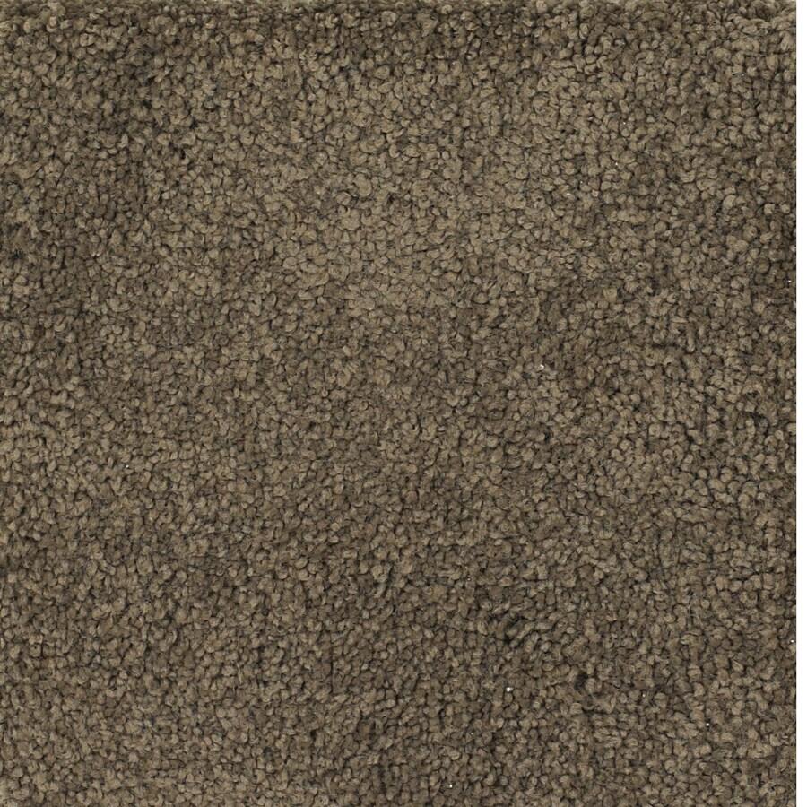 Dixie Group TruSoft Pomadour Brown/Tan Textured Indoor Carpet