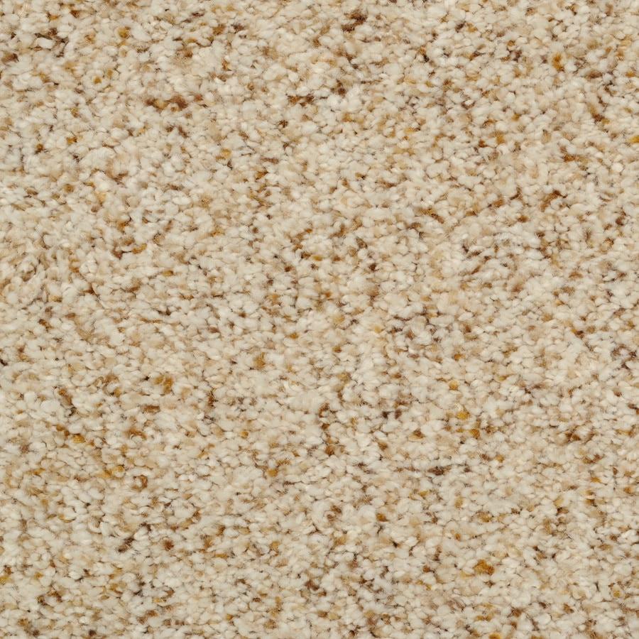 Dixie Group TruSoft Levity- Feature Buy Cream/Beige/Almond Textured Indoor Carpet