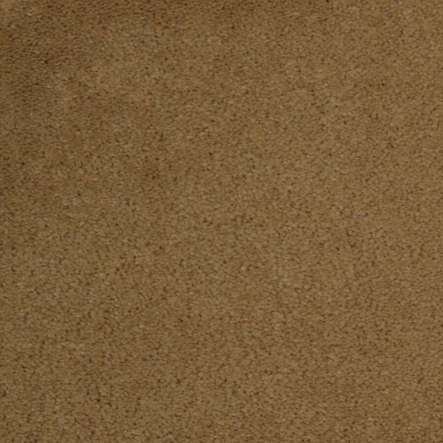 Dixie Group TruSoft Vellore Daybreak Textured Indoor Carpet