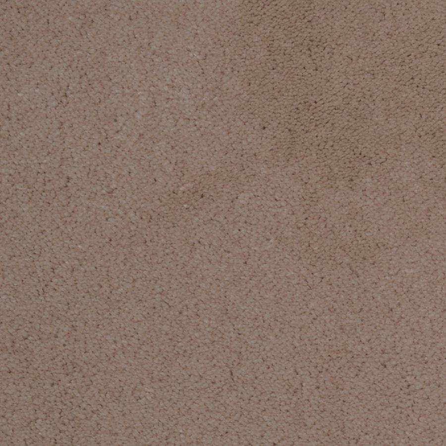 Dixie Group TruSoft Vellore Passion Textured Indoor Carpet