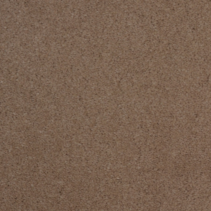 Dixie Group TruSoft Vellore Zephyr Textured Indoor Carpet