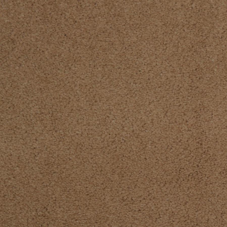 Dixie Group TruSoft Vellore String Textured Indoor Carpet