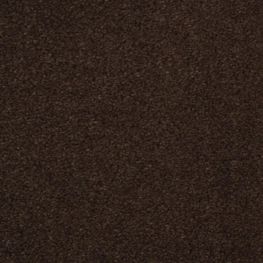 Dixie Group TruSoft Vellore Pinata Textured Indoor Carpet