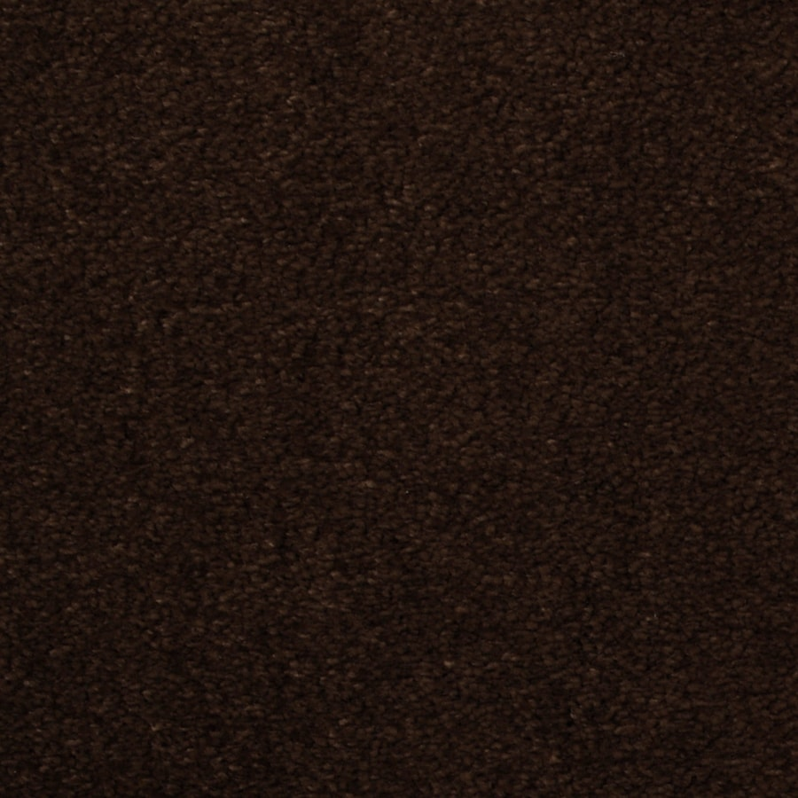 Dixie Group TruSoft Vellore Abstract Textured Indoor Carpet
