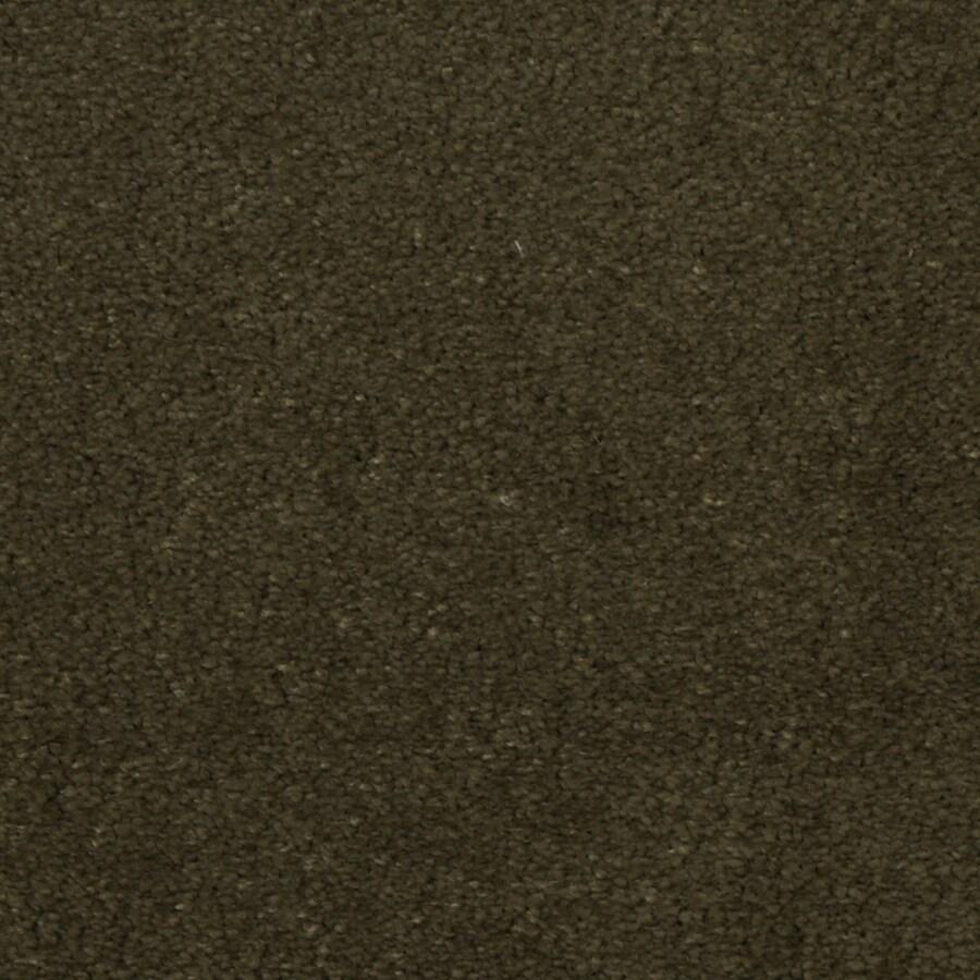 Dixie Group TruSoft Vellore Starlight Textured Indoor Carpet