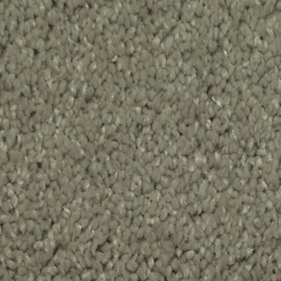 Dixie Group TruSoft Larissa Electric Textured Indoor Carpet