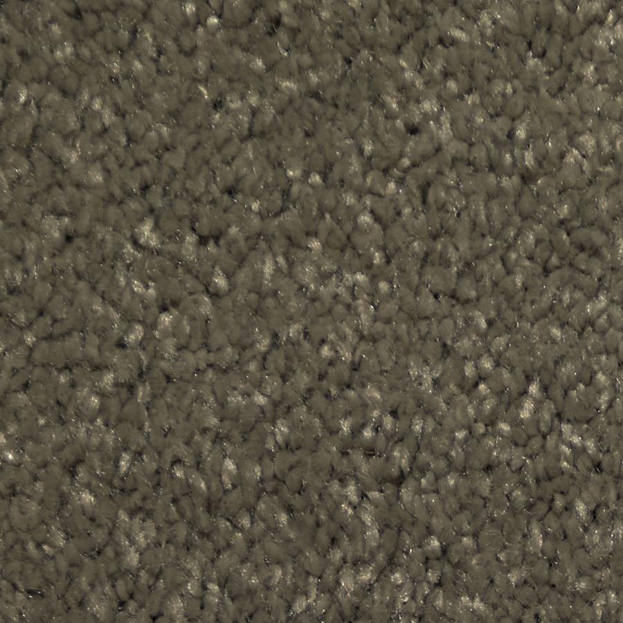 Dixie Group TruSoft Larissa Skylight Textured Indoor Carpet