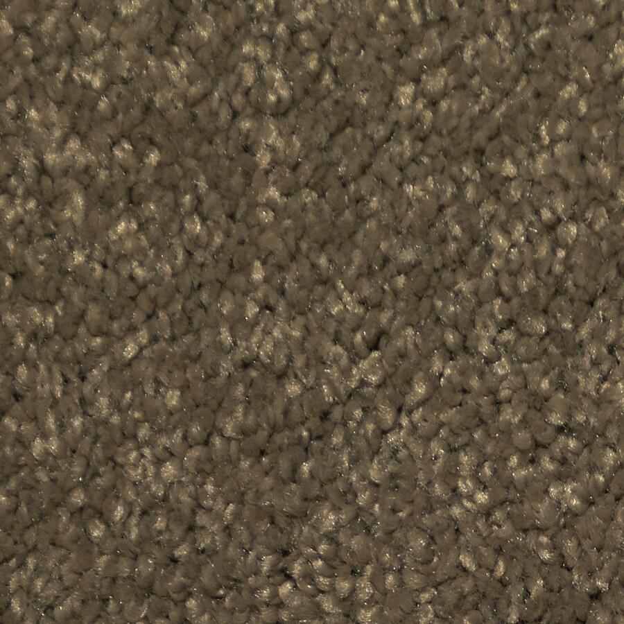 Dixie Group TruSoft Larissa Forbidden Textured Indoor Carpet