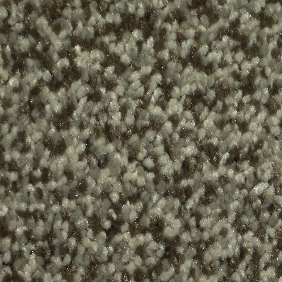 Dixie Group TruSoft Larissa Armani Textured Indoor Carpet