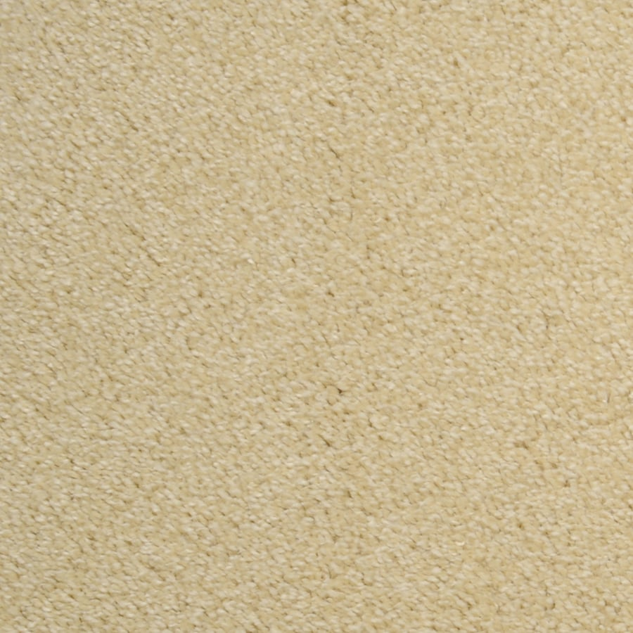 STAINMASTER Paramont Rectangular Indoor Tufted Area Rug (Common: 4 x 6; Actual: 48-in W x 72-in L)
