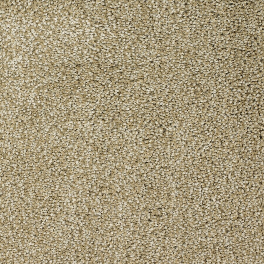 STAINMASTER Weathered Rectangular Indoor Tufted Area Rug (Common: 6 x 9; Actual: 72-in W x 108-in L)