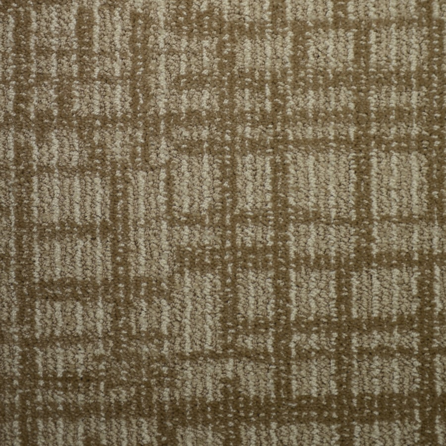 STAINMASTER PetProtect Kingsland Biscay Cut and Loop Indoor Carpet