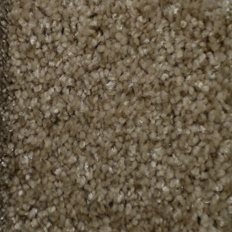 STAINMASTER TruSoft Clearman Estates Ryder Frieze Indoor Carpet