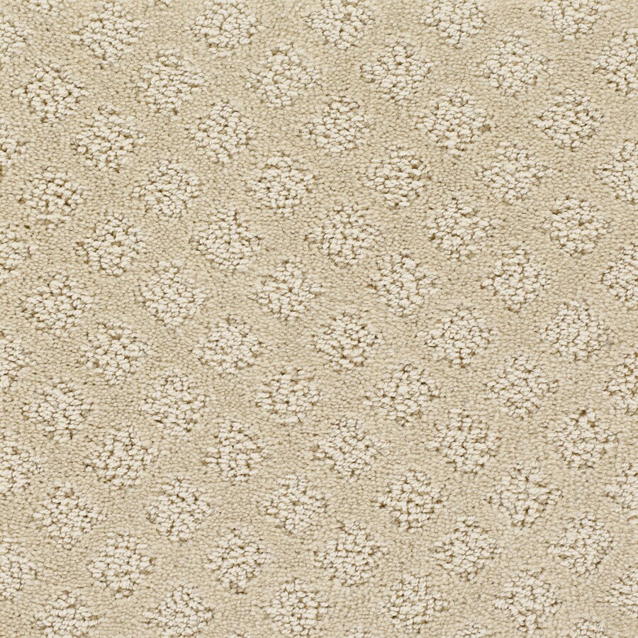 STAINMASTER PetProtect Autumn Fields - Feature Buy Feather Down Cut and Loop Indoor Carpet