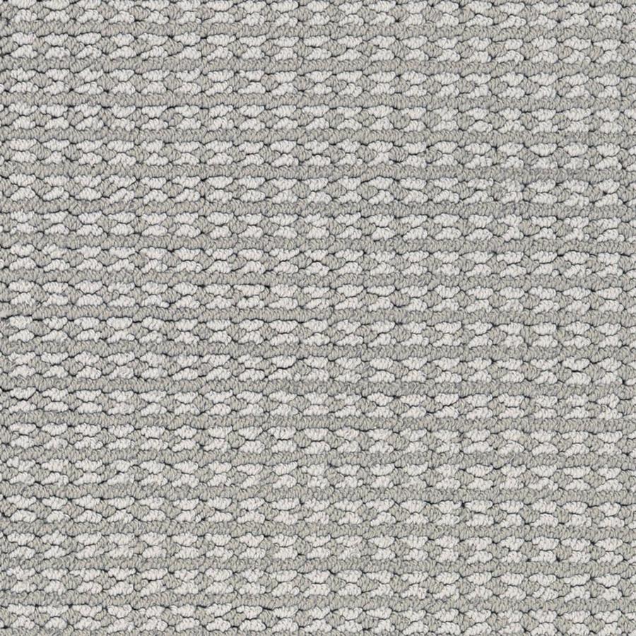 STAINMASTER PetProtect Secret Dream Electra Cut and Loop Indoor Carpet