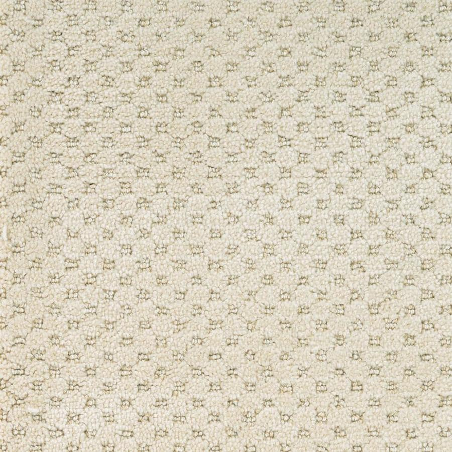 STAINMASTER PetProtect Natural Essence Royal Canvas Cut and Loop Indoor Carpet