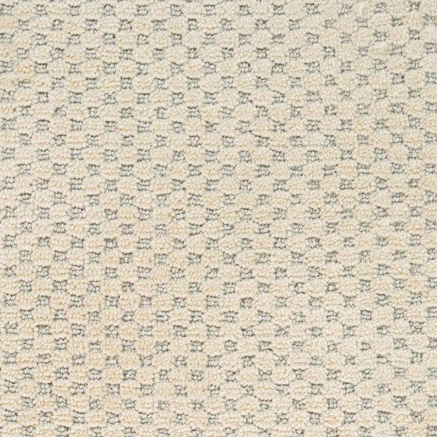STAINMASTER PetProtect Natural Essence Old Stone Cut and Loop Indoor Carpet
