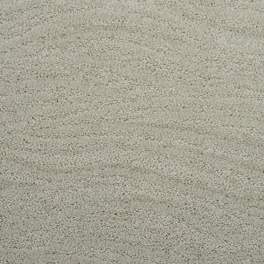 STAINMASTER Active Family Rutherford Hedge Cut and Loop Indoor Carpet