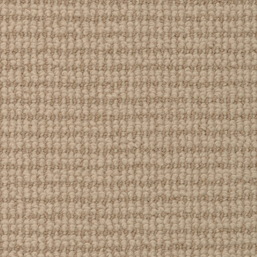 STAINMASTER Active Family Morning Glory Slicker Cut and Loop Indoor Carpet