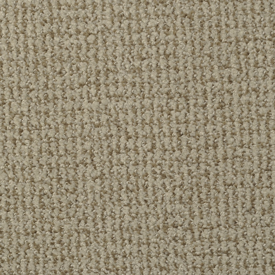 STAINMASTER Active Family Morning Jewel Cosmic Latte Cut and Loop Indoor Carpet
