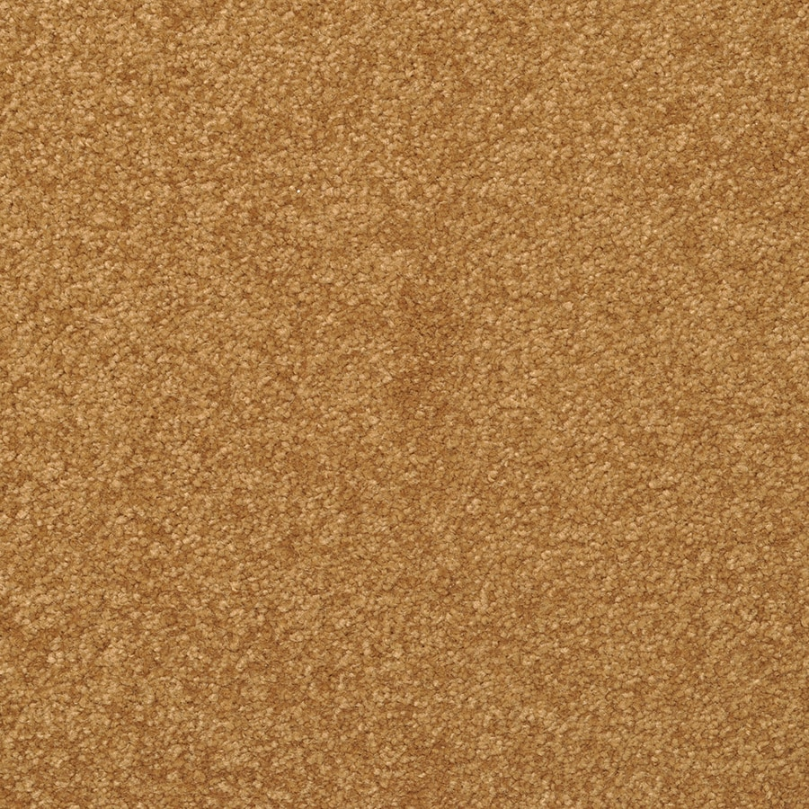 STAINMASTER Active Family Influential Nutmeg Textured Indoor Carpet