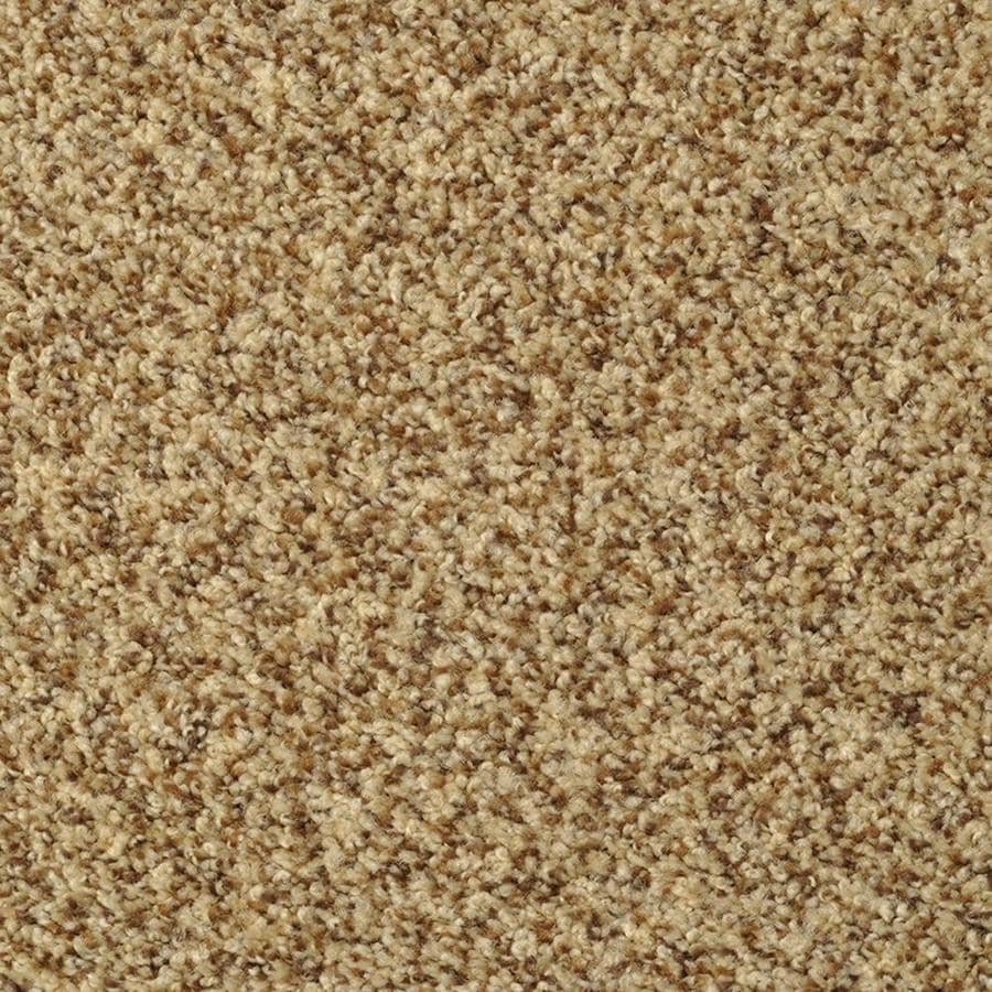 STAINMASTER Active Family On Broadway Tuscany Textured Indoor Carpet