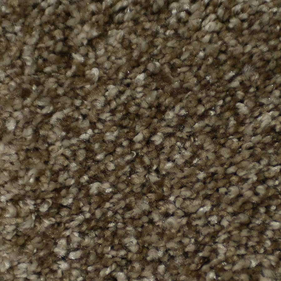 STAINMASTER Active Family On Broadway Montage Textured Indoor Carpet