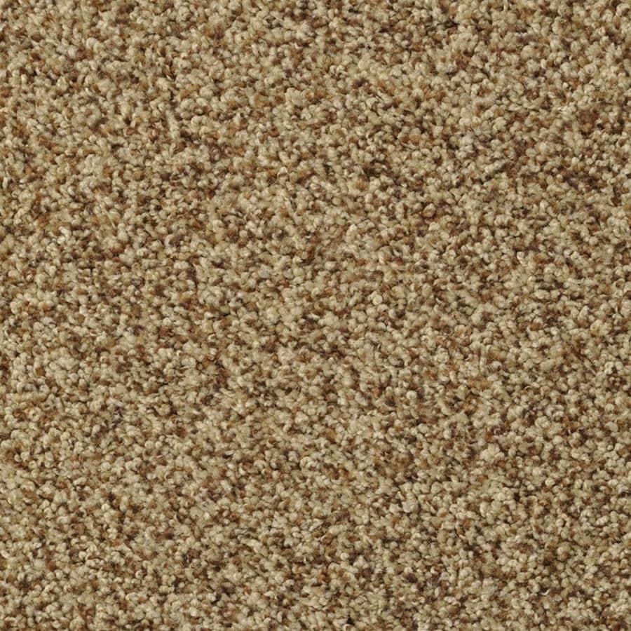 STAINMASTER Active Family Cinema Henna Textured Indoor Carpet